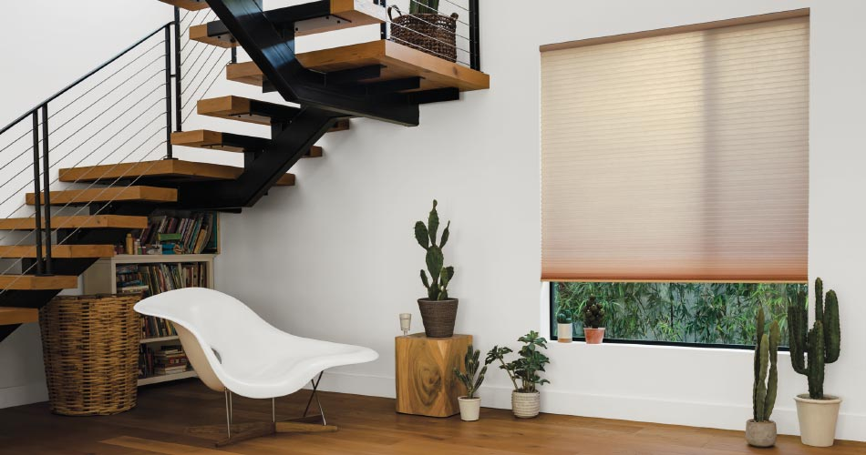 Living Room Interior with Honeycomb Shades